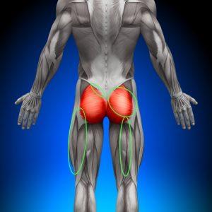 SIJ Pain Distribution